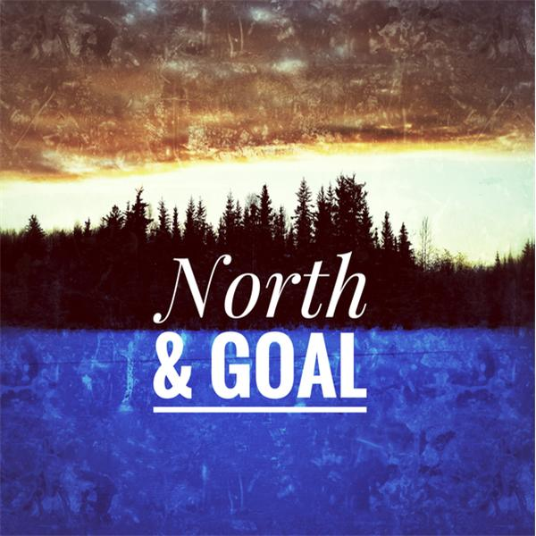 North and Goal