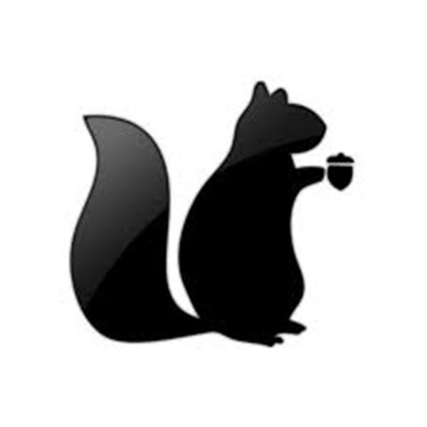 The Black Squirrels Network