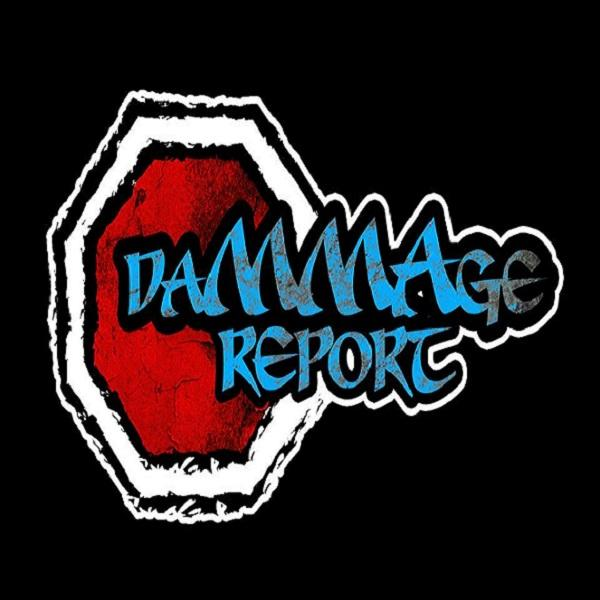 The DaMMAge Report