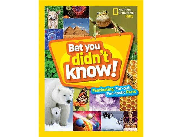 "Big Blend Radio: Becky Baines - National Geographic Kids ""Bet You Didn't Know!"""