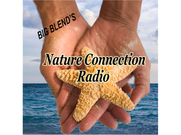 Big Blend Radio: Washington Nature Trip & Gardening for Wildlife