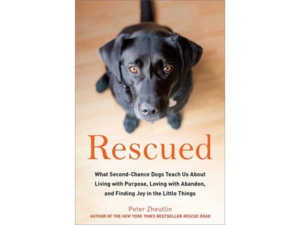 Big Blend Radio: Author Peter Zheutlin - Rescued