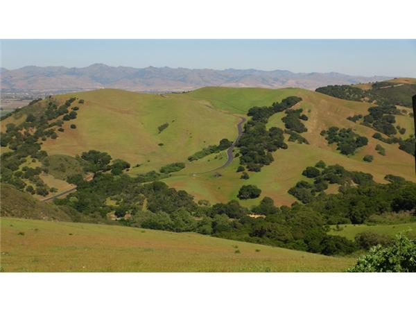 Big Blend Radio: Spring in San Benito County, California