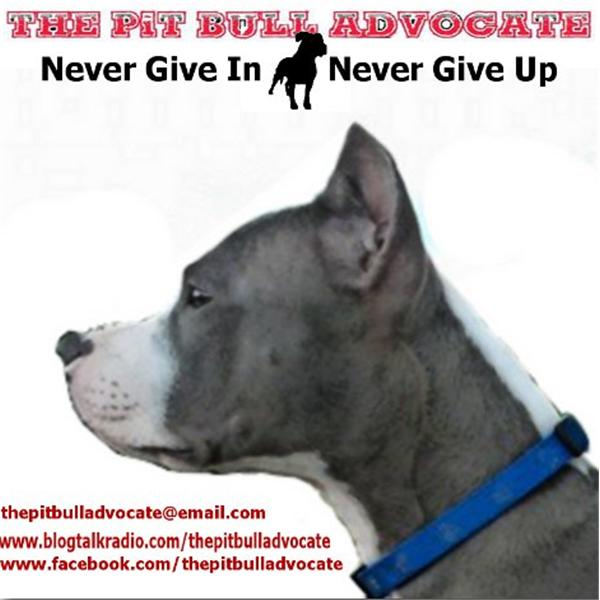 The Pit Bull Advocate