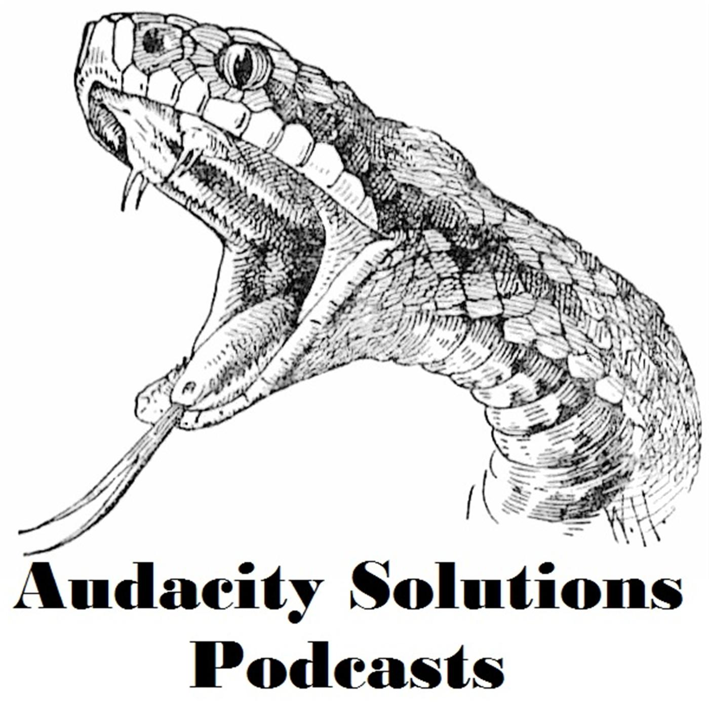 Audacity Solutions Podcasts